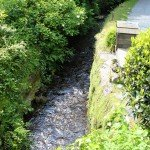 The stream opposite Penwartha Cottages